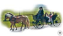 Hochzeitskutsche in Ostbayern