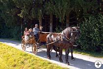 Ostbayern Kutschfahrten
