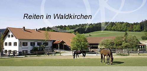 Reiten in Waldkirchen Bayerwald