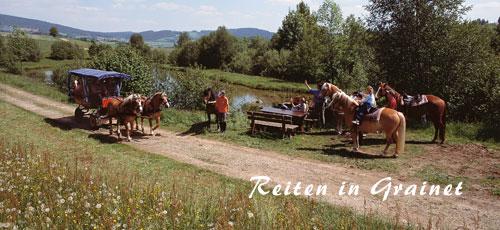 Reiten und Kutschenfahren im Bayerischen Wald