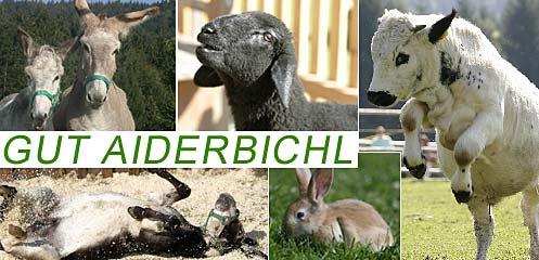 Gut Aiderbichl Ostbayern