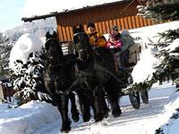 Pferdeschlittenfahrten im Dreiburgenland Bayerischer Wald