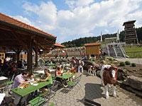 Sommerrodelbahnen im Bayerischen Wald in St. Englmar
