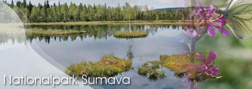 Nationalpark Sumava