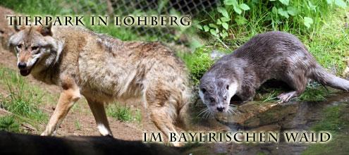 Tierpark in Lohberg