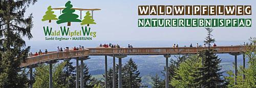 Wald Wipfel Weg in St. Englmar im Bayerischen Wald