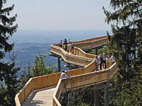 Ausflugsziel Wald Wipfel Weg im Bayerischen Wald