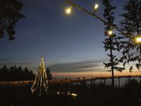 Waldwipfelweg zur Weihnachtszeit im Bayerischen Wald in St. Englmar