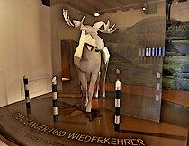 Ausstellung im Jagd- und Fischereimuseum Freyung, Bayer. Wald