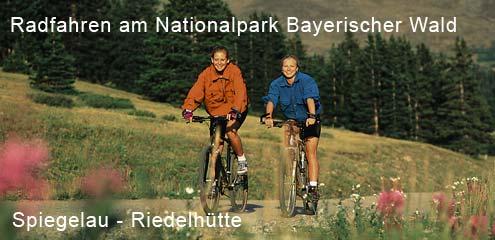 Radfahren in Waldhäuser - Riedelhütte Bayerwald