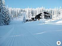 Chamer Hütte - Skiurlaub in Bodenmais Ostbayern