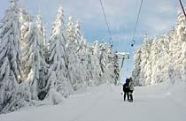 Winterurlaub Bayerischer Wald