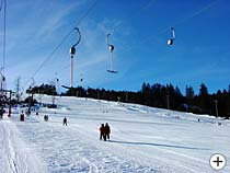 Wintersport Bayer. Wald