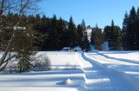 Langlaufzentrum Mauth Finstrau Winterurlaub Alpinski Bayrischer Wald