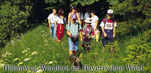 Böhmweg - Wandern im Bayerischen Wald
