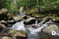 Wildwasser Buchberger Leite Bayrischer Wald