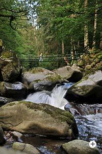 Hängebrücke in der Buchberger Leite Bayerischer Wald