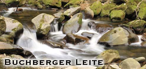 Buchberger Leite Bayr. Wald