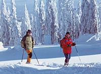 Skigebiet Haidel Langlaufzentrum Grainet