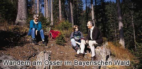 Wandergebiet Osser - Bayerwald