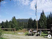 Großer Arber im Bayr. Wald